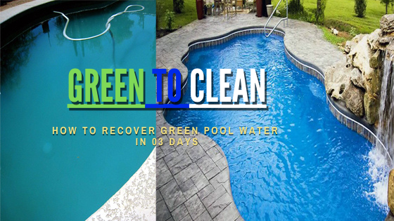 Get your pool from Green to Clean